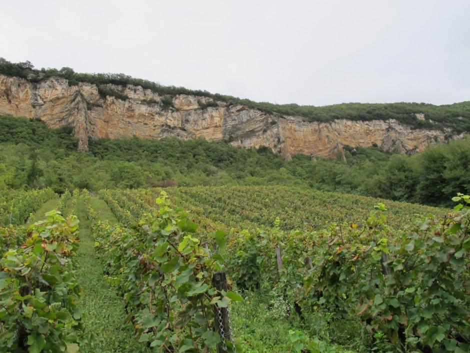 La Vigne du Perron